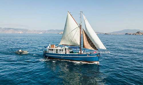 10 Best Komodo Tour Packages Boat