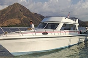 One Day Komodo Tour with Speed Boat