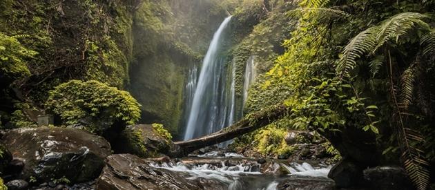 Sendang Gile Waterfall Tour