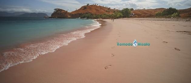 3 Days Sharing Komodo Tour Package
