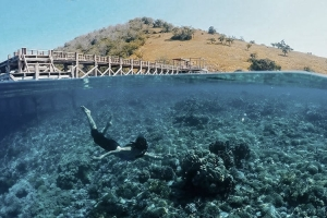 Labuan Bajo Tour Package
