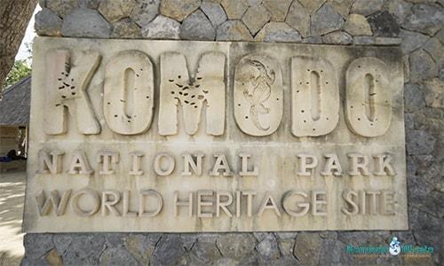 Komodo Island in Flores