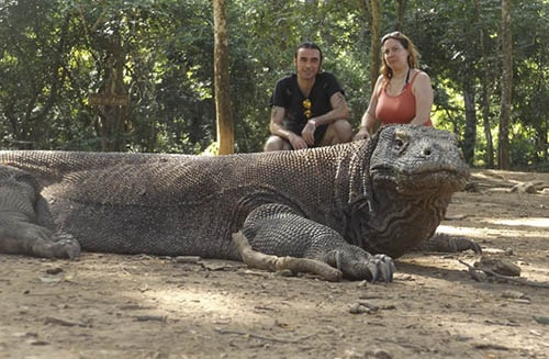 Things to do on Komodo island tours