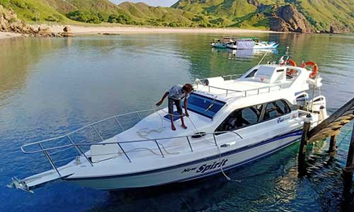 New Spirit, Private High Speedboat Charter