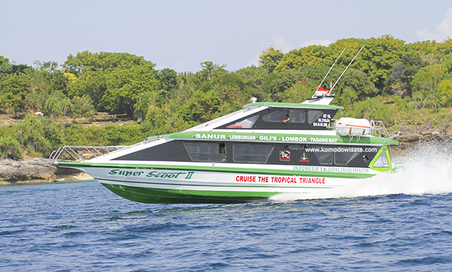 Dive package with fast boat