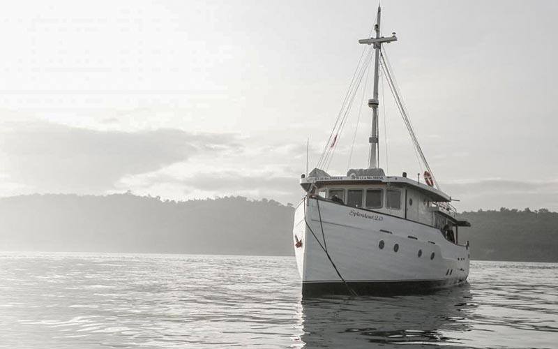 Splendour Private Boat Charters